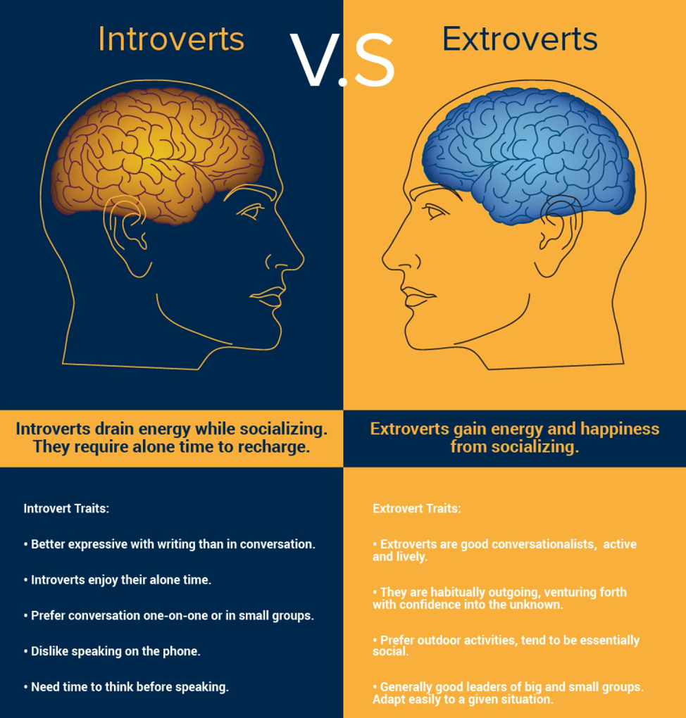 Picture15 - Introverts & Extroverts – Finding Balance